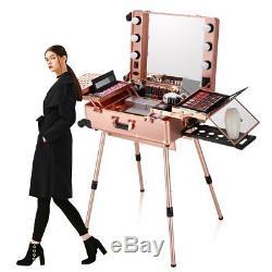 Makeup Organizer Bag Led Mirror Kit Case Box Trolley Wheels Travel Lock Rose Gld