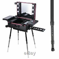 Rolling Makeup Train Case Mirror Salon Studio Cosmetic Artist Lockable Organizer